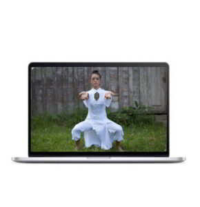 Qigong for Shoulders, Wrist and Fingers Online Course